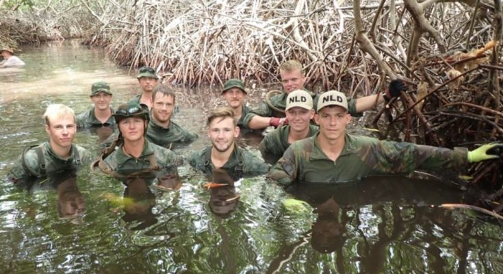 Militarnan a yuda Mangrove Fanatics planta mata